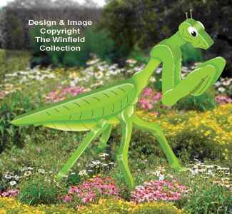 3D Giant Praying Mantis Pattern